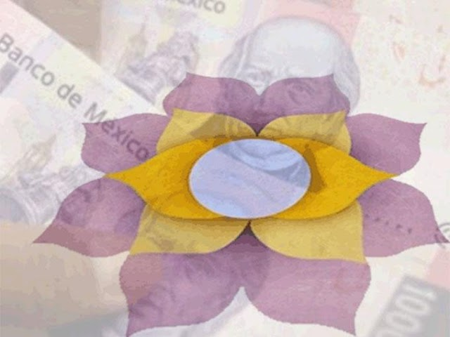 Foro Ciudadano alerta sobre nuevo fraude piramidal