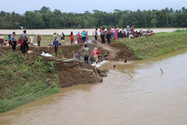 Gotong Royong Perbaiki Tanggul Darurat Sungai Gumelar yang Jebol
