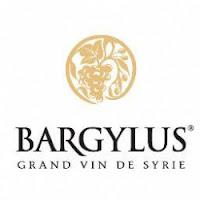 beaux-vin blog découvrir vin syrie bargylus