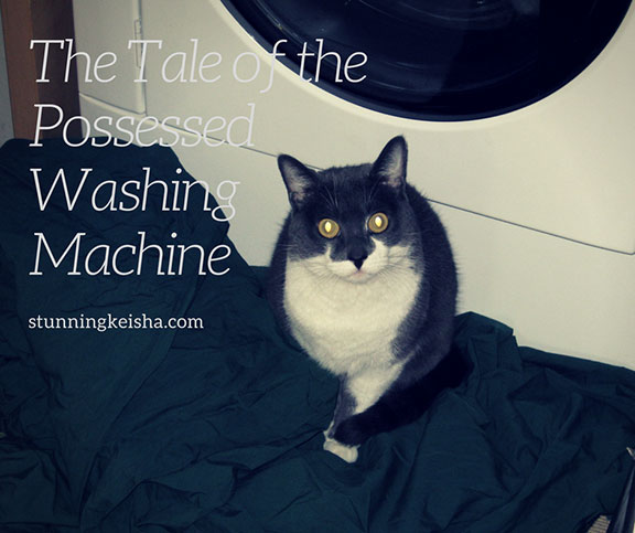 The Tale of the Possessed Washing Machine