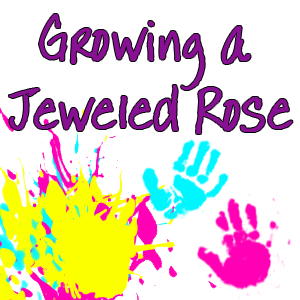 Growing a Jeweled Rose