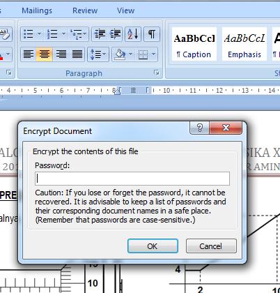 Memasukkan password untuk file microsoft word