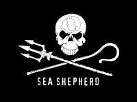 Sea Shephard