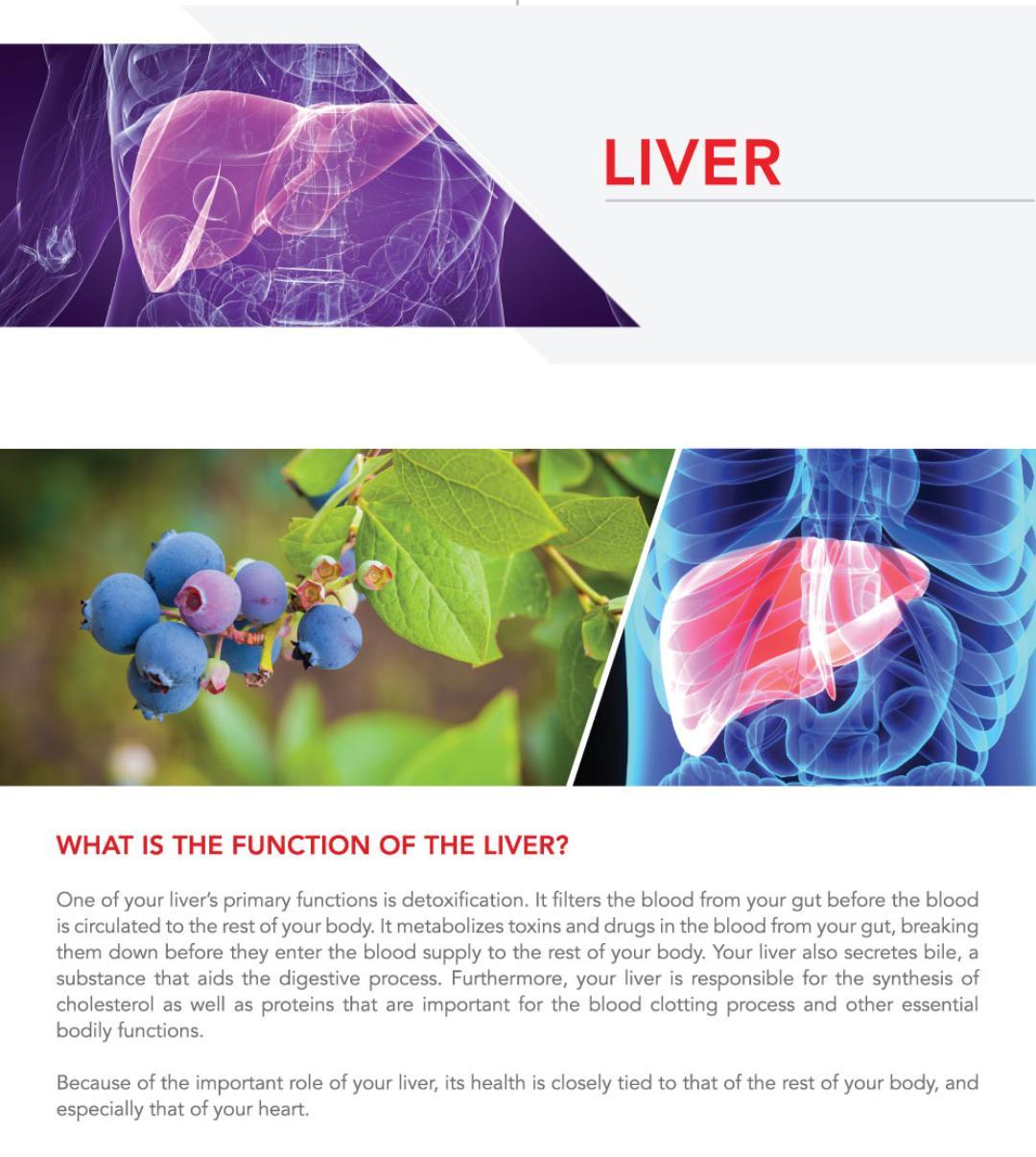 Nutritional Immunology Lifestyle Testimonial On Fatty Liver