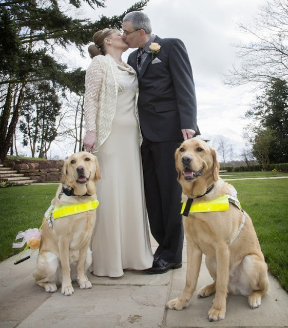 Все о братьях наших меньших: Собаки-поводыри женили хозяев
