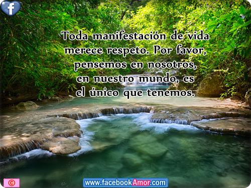 Frases De Amor Con Imagenes De Naturaleza: Imagenes Con Frases De Naturaleza Para Etiquetar En