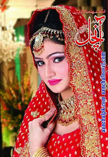 Aanchal Digest February 2016 Online Reading