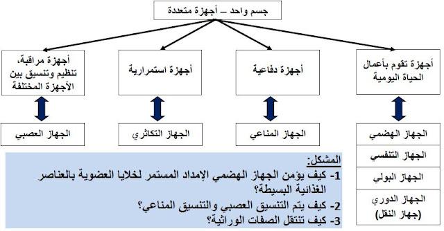 الوضعية الشاملة و الوضعية الانطلاقية لمقطع التغذية عند الانسان للسنة الرابعة متوسط خالد محمودي