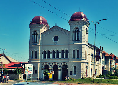 sinagoga radauti