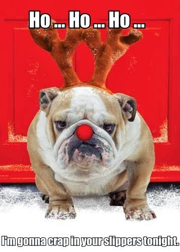 Funny Christmas British Bulldog Ho Joke Meme Photo
