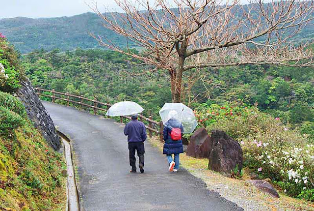 elders,walking, umbrellas,couple,mountains, road