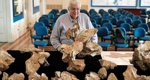 Brazil's biggest dinosaur found after passing 60 years in cupboard