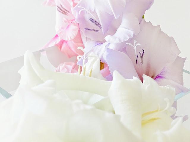 Gladiolen - https://mammilade.blogspot.de - 5 Lieblinge der Woche