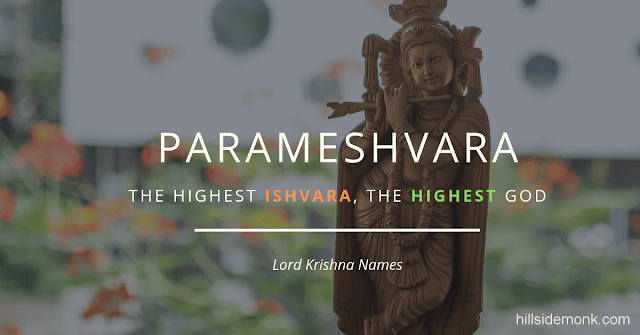 Lord Krishna Names With Meaning 28