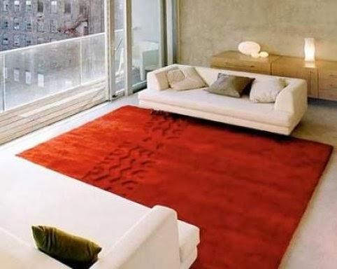 Mi rinc n de sue os trucos para limpiar las alfombras - Marcas de alfombras ...