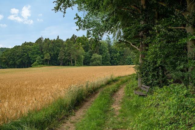 Erzweg Etappe 5 Etzelwang – Lichtenegg  Wandern Amberg-Sulzbacherland 06