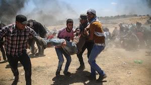 """""""Israel"""" Bunuh 8 Warga Palestina dan Melukai 810 Orang Selama Februari"""