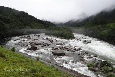 Miyanoura river, Yakushima