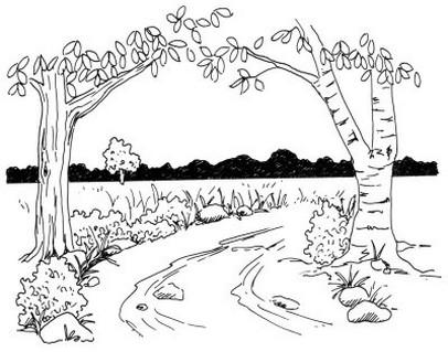 Desenho Para Pintar 7 Ano Paisagem Imagui
