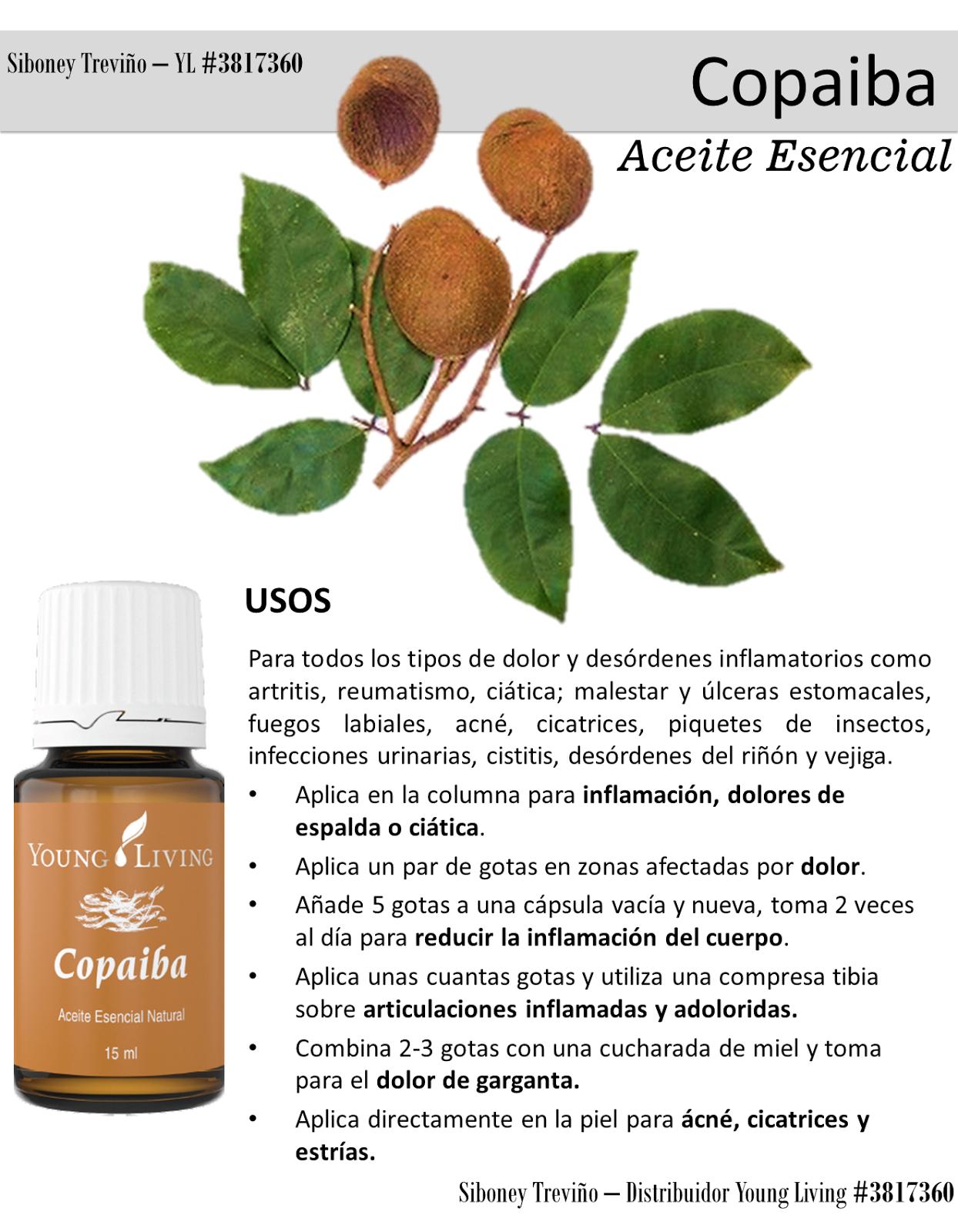 Tips Esenciales Aceite Esencial De Copaiba