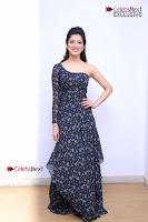 Telugu Actress Richa Panai Stills in One Shoulder Floral Long Dress at Rakshaka Bhatudu Movie Interview  0073.JPG