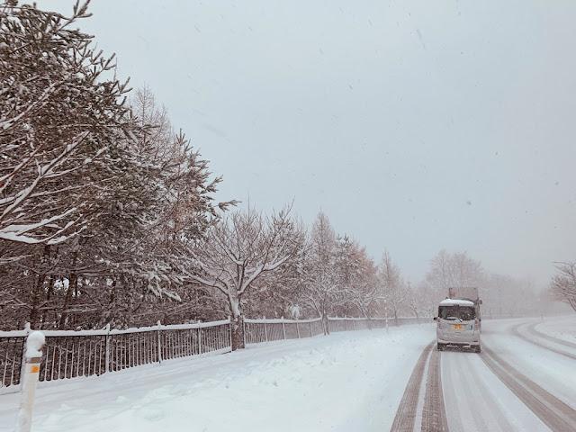 八甲田山路雪景