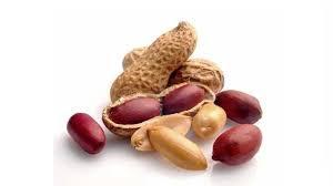 peanuts benefits for hair in urdu