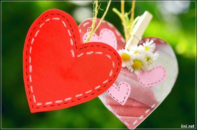 ảnh trái tim và hoa đẹp