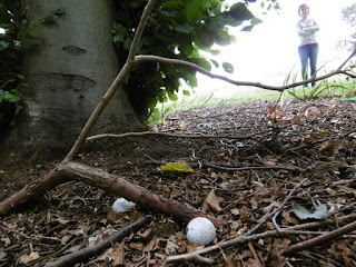 Two old golf balls in Luton's Minigolf Meadows in Wardown Park