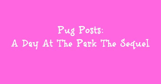 Pug Posts: A Day At The Park The Sequel