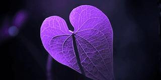 Alzheimer's Reading Room Purple Heart