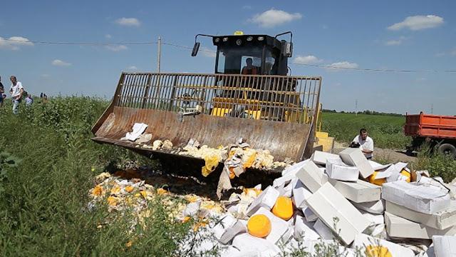 В Башкирии за год уничтожили полтонны санкционных продуктов