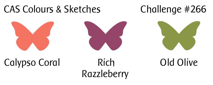 cas colours sketches challenge 266 colors