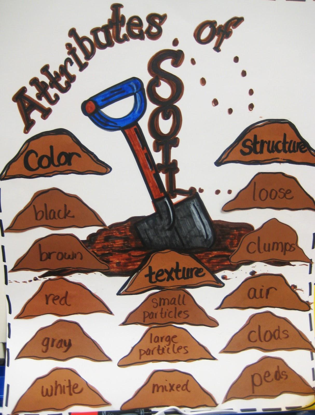 First Grade Wow We Dig Dirt