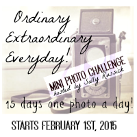 Looking for a Photo Challenge?