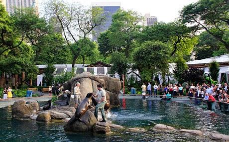 Zoológico do Central Park em Nova York