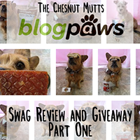 blogpaws swag review and giveaway part one