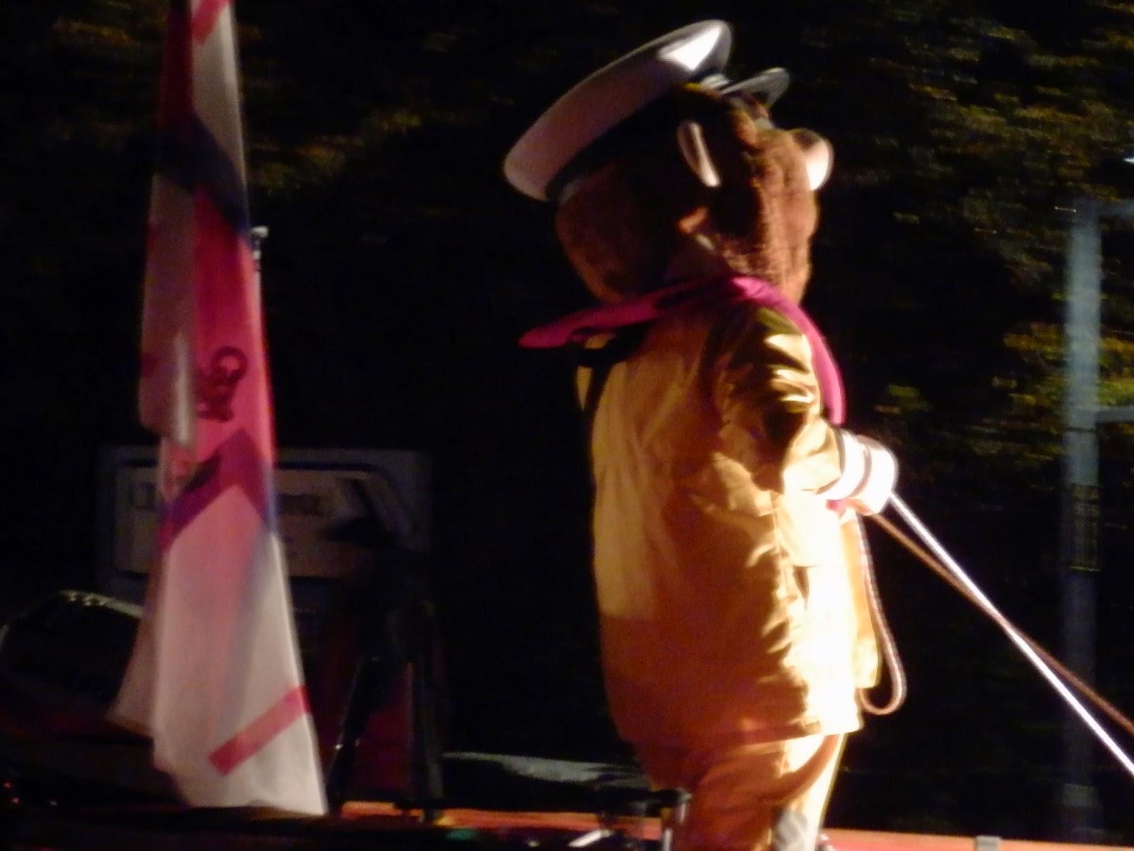 Torch Light Parade St.Austell