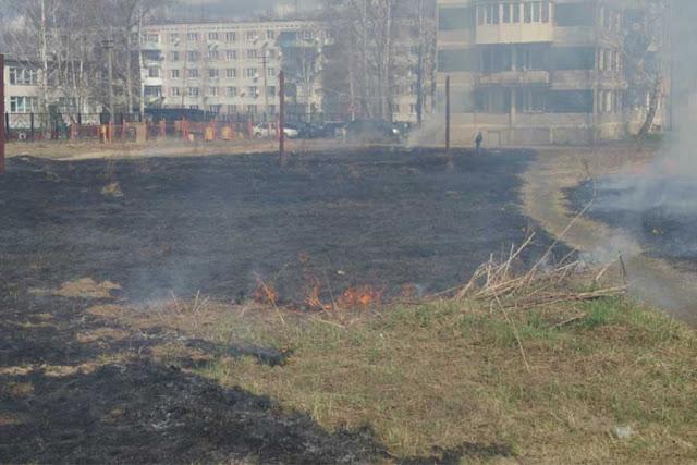 Из жизни безумцев: они жгут сухую траву в Сергиево-Посадском районе