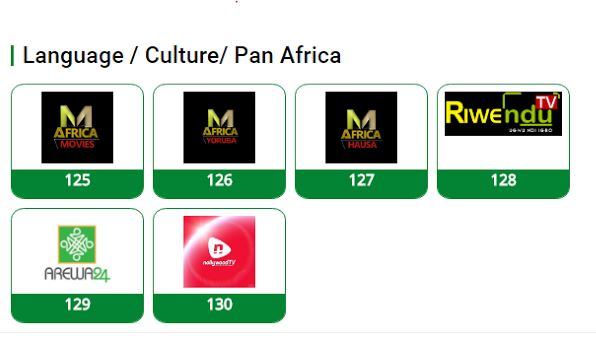 TSTV African Chennels