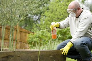 cara mudah mengurangi residu pestisida pada makanan