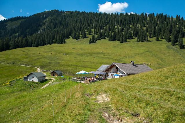 Wanderung zur Stepbergalm  Wandern Garmisch-Partenkirchen  Stepbergtour Alpentestival-Garmisch-Partenkirchen 11