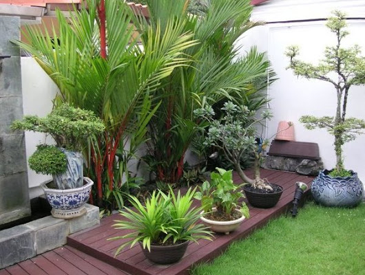 Home Garden Design Ideas You Can Implement