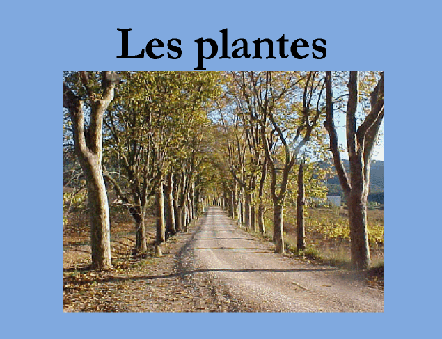 http://clic.xtec.cat/db/jclicApplet.jsp?project=http://clic.xtec.cat/projects/medici/plantes2/jclic/plantes2.jclic.zip&lang=ca&title=Coneixement+del+medi+natural,+social+i+cultural+CI