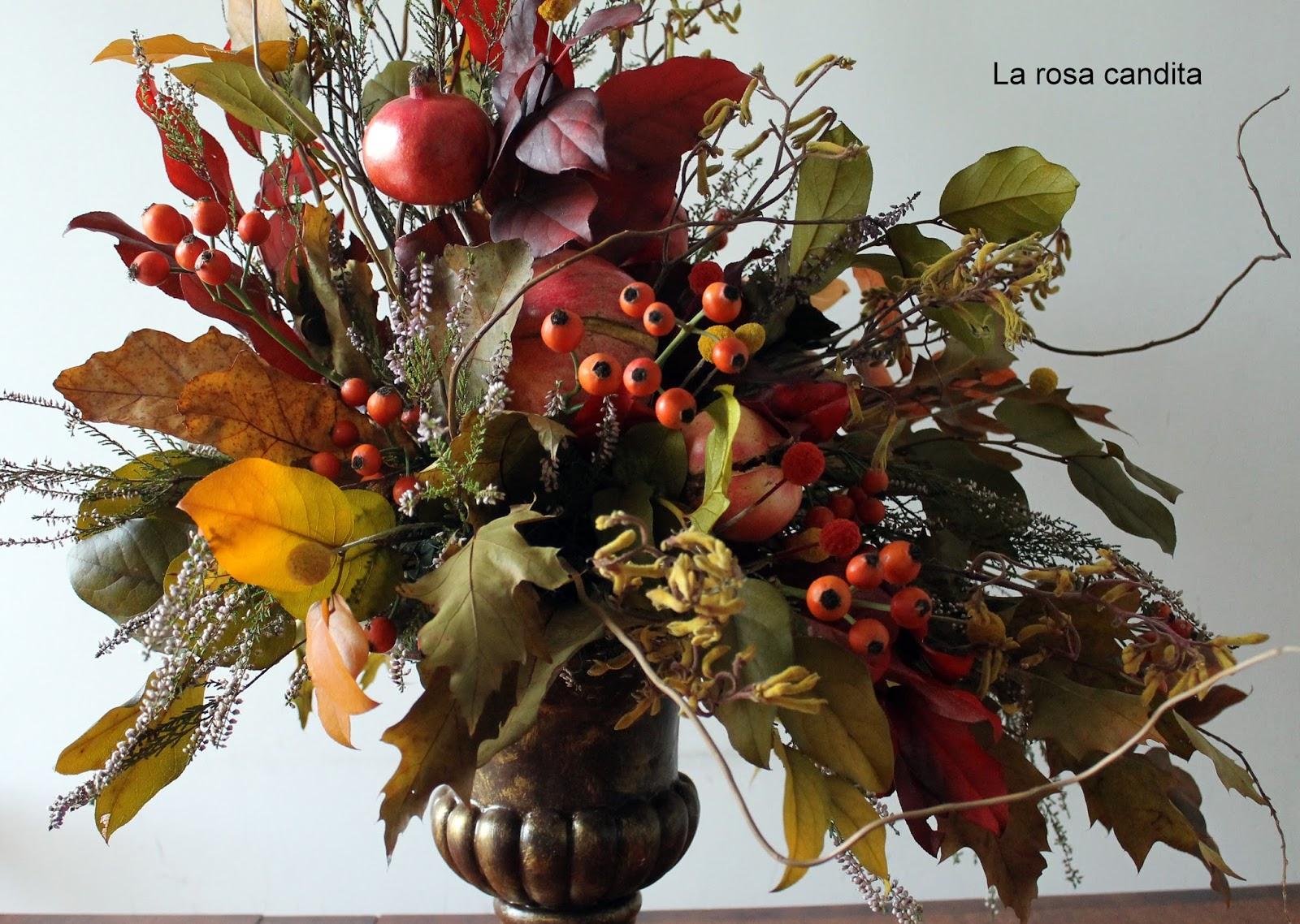 Eccezionale La rosa candita: Colori d'autunno RT96
