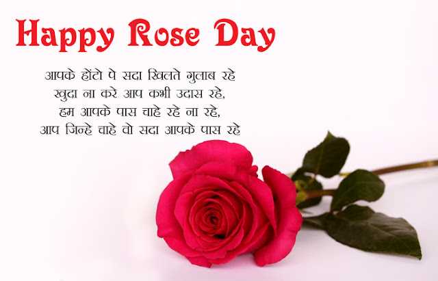 Rose day wishes images wallpapers