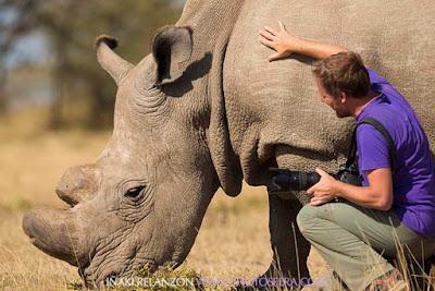Rinoceronte Blanco Sudán