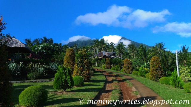 Canaan Hill Farms and Honey Garden: Biliran's Promised ...
