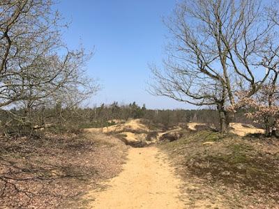 Visiting Duinengordel from Erperheide, Oudsberg, Belgium