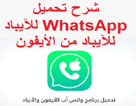 شرح تحميل WhatsApp للآيباد من الأيفون
